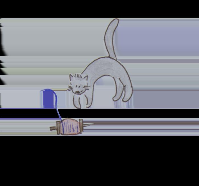 spin wheel cat